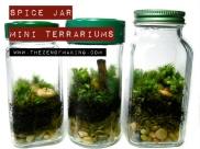 Spice-Jar-Mini-Terrarium_tzom