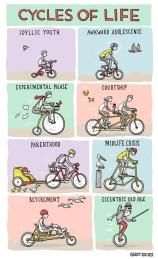 cyclesoflife-blog_original