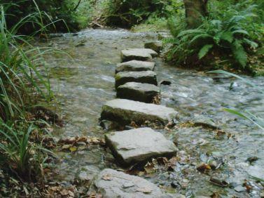 stepping-stones-1.jpg